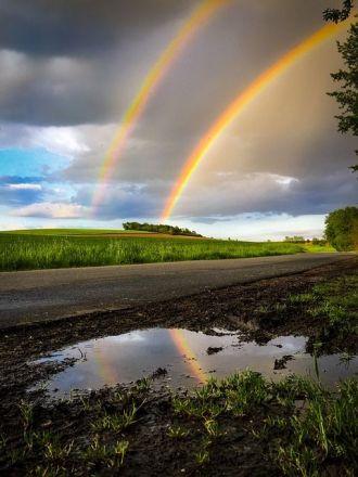 rainbow-2317424_640