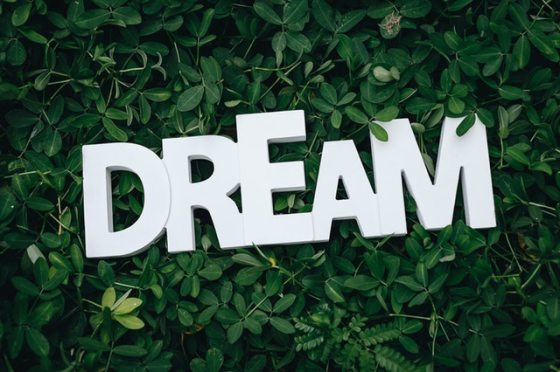 dream-text-on-green-leaves-1535907